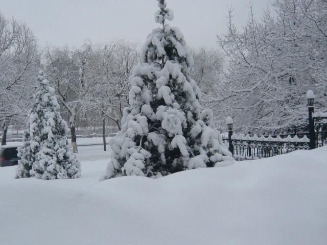 北方农村的冬天