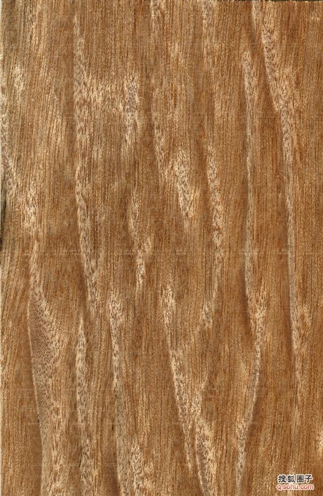 木纹图样欣赏 - 当代艺术