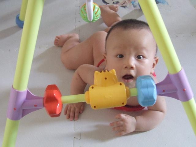 宝宝六个月生长发育总结图片