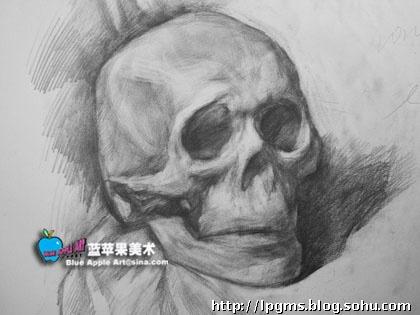 石膏头骨写生作品-蓝苹果美术-搜狐博客