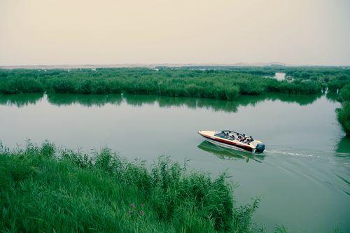 此后,沙湖移荷植藕,种花栽树,植草分芦,添阁增榭,砌石垒岛,设亭连桥