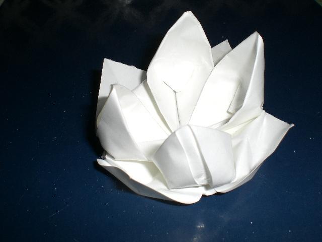 折纸荷花(个人作品)