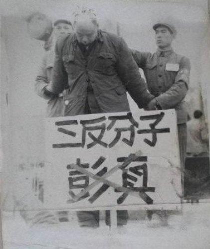 陈寅恪的儿子叶剑英