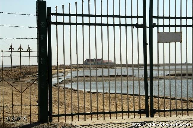 """铁门的门柱上写着""""保护区核心区&#8221"""